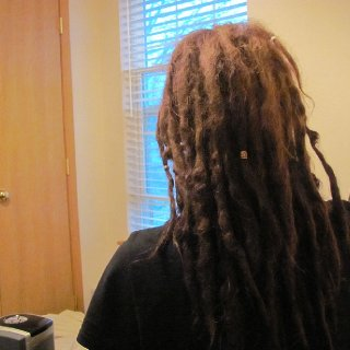 Back o' my dreads. i think theyre coming along quite nicely. theyre getting really really fuckin hard.