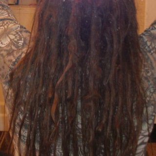 I think they are really starting to look like dreads :)