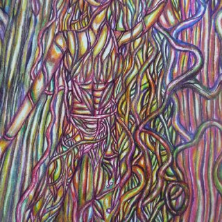 I created this piece using colored pencil and pen