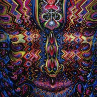 Spirtual journey  Alex Grey