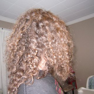 One month natural dreads. no backcomb or tnr. Just wash and wait. 7/1/2011