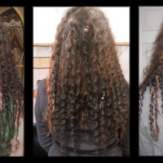 Timeline-7-days 73-days and 88-days Shrinking and looping! 20 of my 45 dreads have major loops. Underneath is where most of the action is and the top has just started over the last week or so.