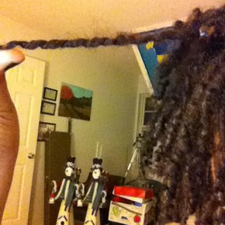 dread and spiral curl