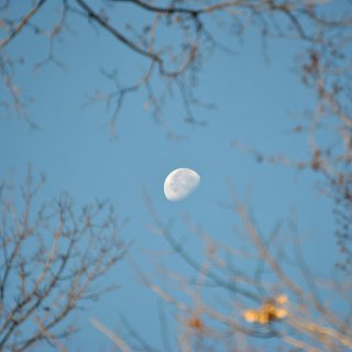 Cause moon pictures are cool :)