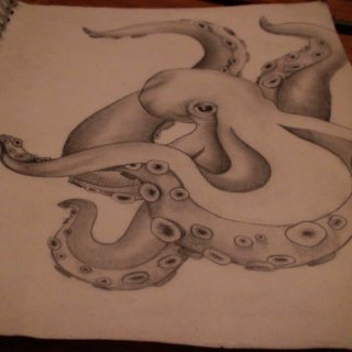the octopus drawing... of course.