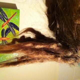 once upon a time these hairs were to my waist