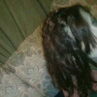 Dreads 3.5 months old (1/19/2012)