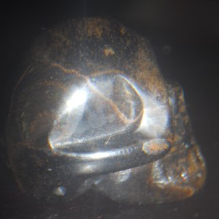 The side of the skull