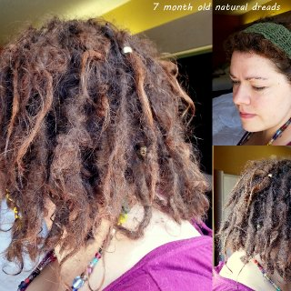 Today makes 7 months with dreads. Pretty exciting! Starting to see some slow growth starting, though the top layer has shortened considerably.