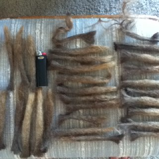 Here is a collection of my old set of dreads done the DreadheadHQ method back in '08. They really aren't very waxy, and I even cut one open to see what dwelled inside and honestly it looked fine. I used very little wax and stopped completely after like 1.5 months. Still, I'm glad I didn't keep them for various reasons.