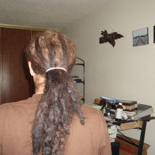 from behind when pulled back into a ponytail