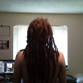 now with 5 new dreads. ripped 2 of the bigger ones, one made 2 and one made 3. im really loving watching the new dreads come together. its like a second shot i get to watch some knot up the natural way instead of backcombed. half of my head is now ripped dreads it seems.