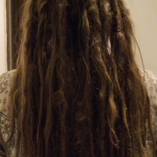 Twist and Rip dreadlocks 3 months back