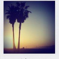 L.A. 2010