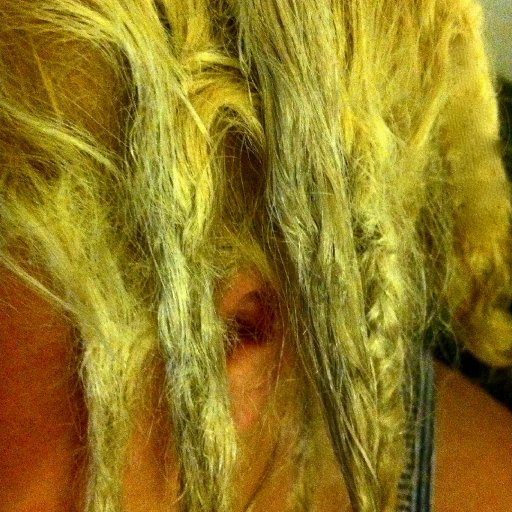 the majorly braided one