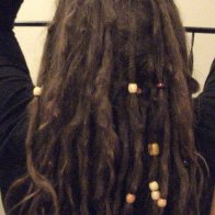 4 months TnR dreadlocks-back