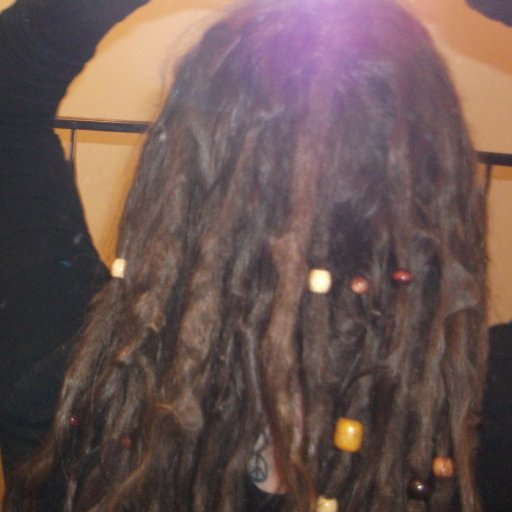 4 month old TnR dreadlocks