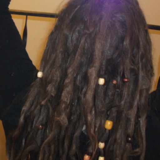 another look at TnR dreads 4 months in