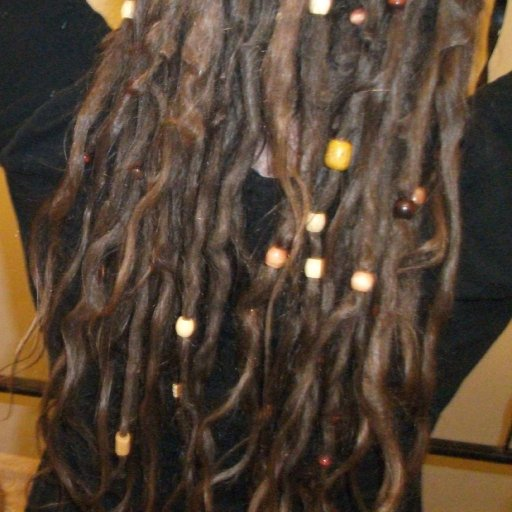 TnR dreadlocks at 4 months