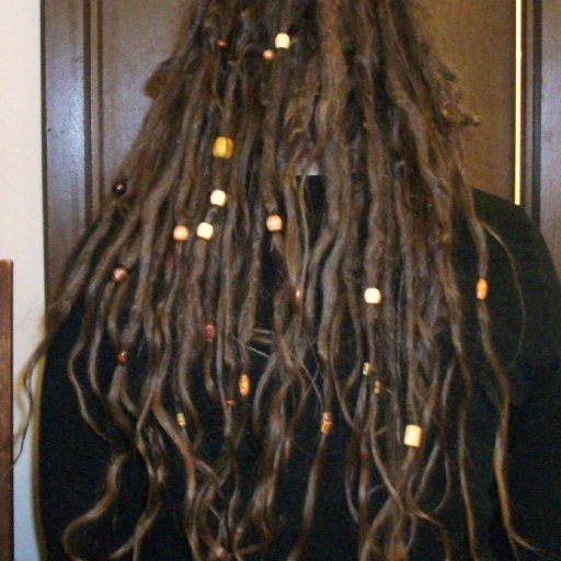 4 month old TnR dreadlocks back