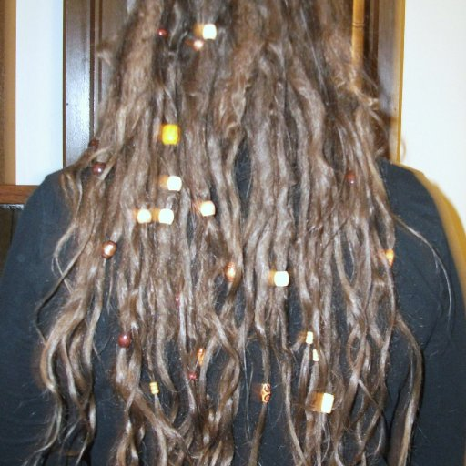 4 months Tnr dreads fuzzy picture