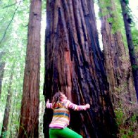 Tree to big for my hug, but not for my love!