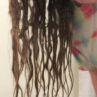 5 month tnr dreadlocks side view