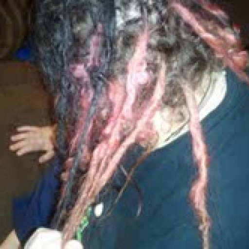 dreadlocks left side 3 months old