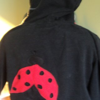 I made this for my friends b-day. SHe luv's lady bugs. Organic Hemp Fleece hoodie with fleece bug applique. :)
