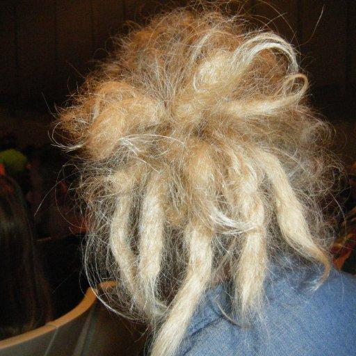 Newbie dreads