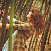 bamboo forest =)