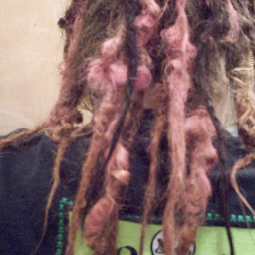 dreads back view 5 months