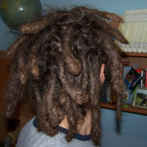 Natural dreadlocks