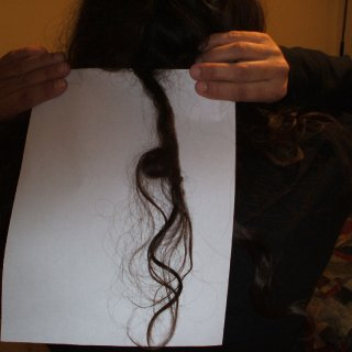 one of my first dreads 2007 4 mos.jpg