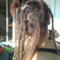 Beginner dreads