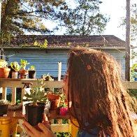 Plant Whispering
