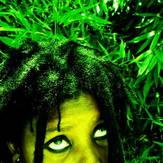 freeform natural dreadlocks 2011 14yrs of dreads
