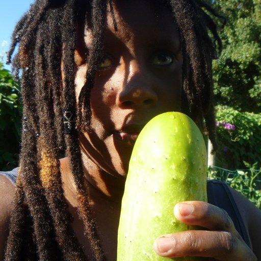 Gigantic Cucumber