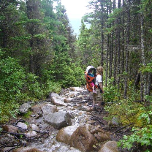 Mont Albert trail