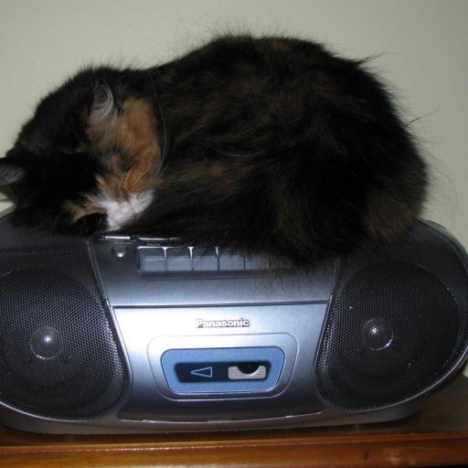 Missy on CD PLayer