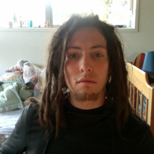 Dreads at 4 months