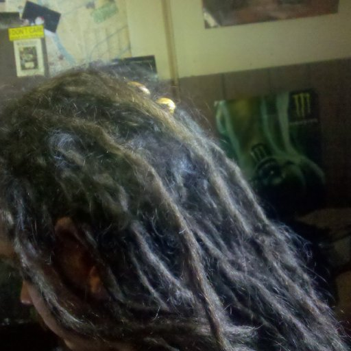 dreadies 10 months