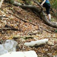 Climbing up a tree : p