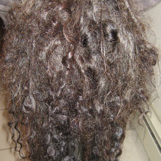 20 of my 45 dreads have major loops. Underneath is where most of the action is and the top has just started over the last week or so.