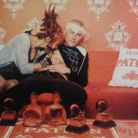 ginger playtime