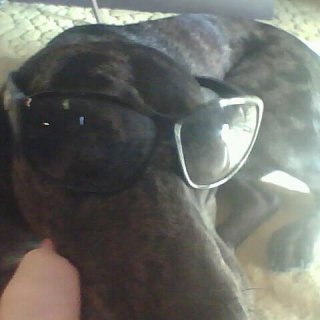 thor in my shades hes been fixed so u can do anything to him and he doesnt care one bit i have done sum crazy shit ill post more later