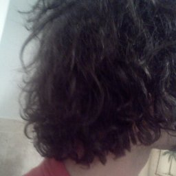 12/7/11 1.5 months into neglect process.