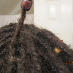 Dreads month 4