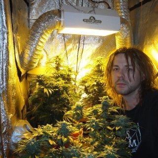 me w my plants