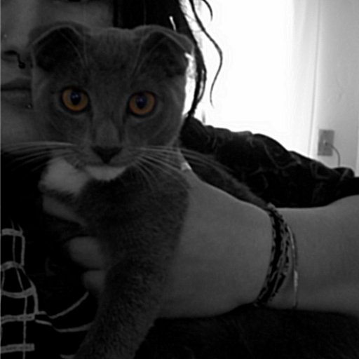 My kitty Clover and I this morning :) Dreads 13days old